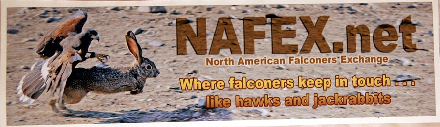 Nafex.Net
